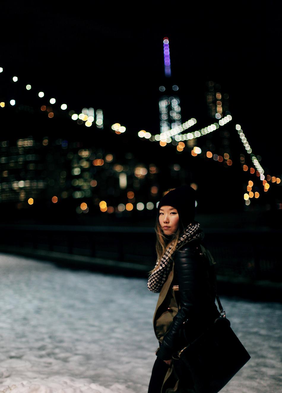 Downtown Manhattan Brooklyn Bridge Park