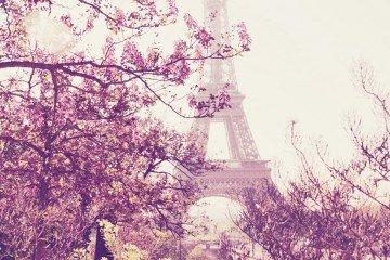 paris_spring_eiffel_tower