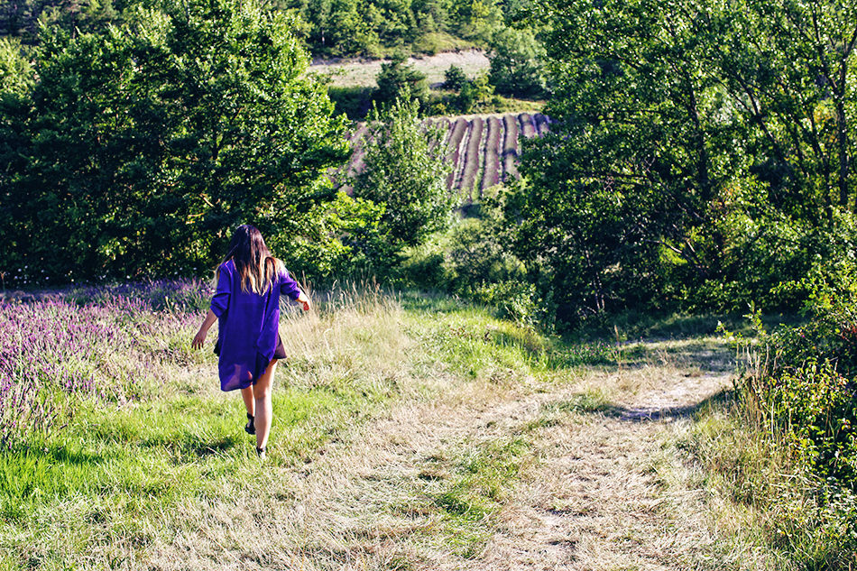 Lavender Fields, Provence | Travel  | Grease & Glamour