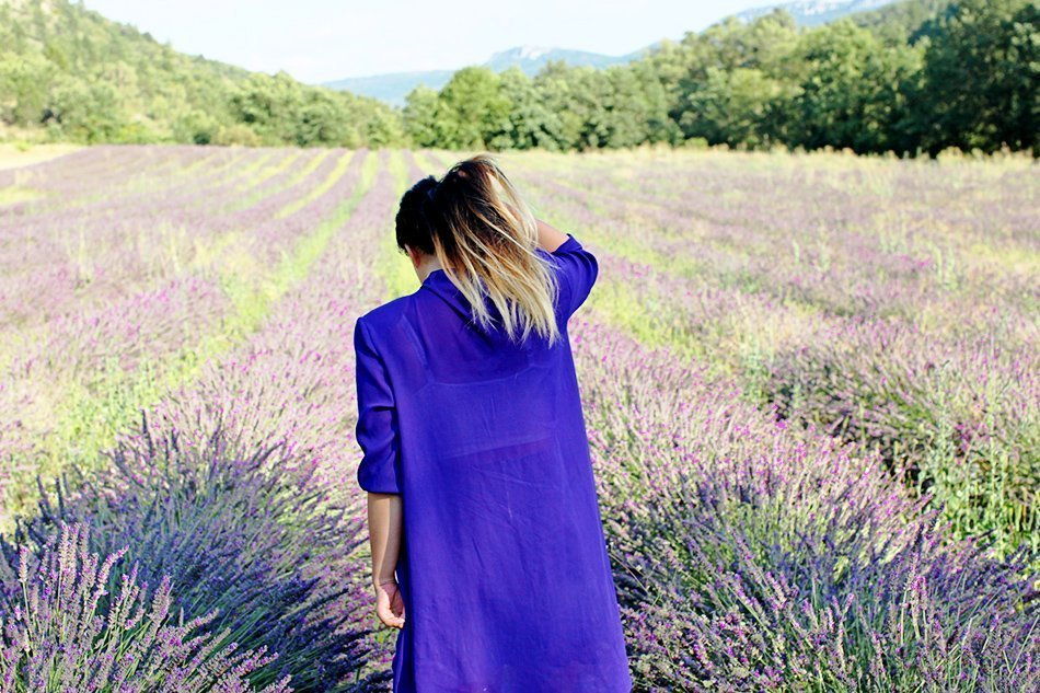 Lavender Fields   Provence, France   Grease & Glamour