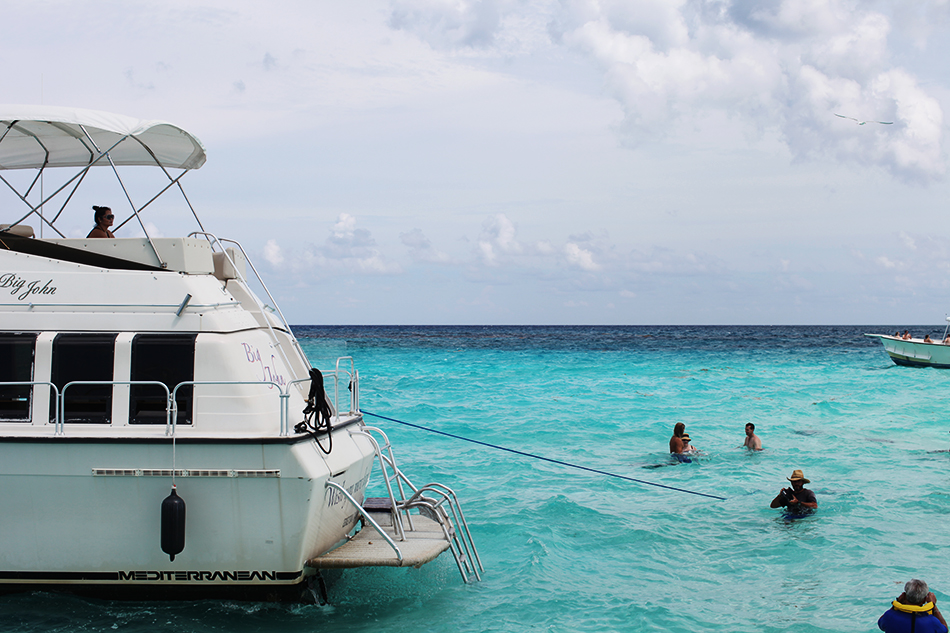 Swimming with Stingrays in the Cayman Islands | Travel