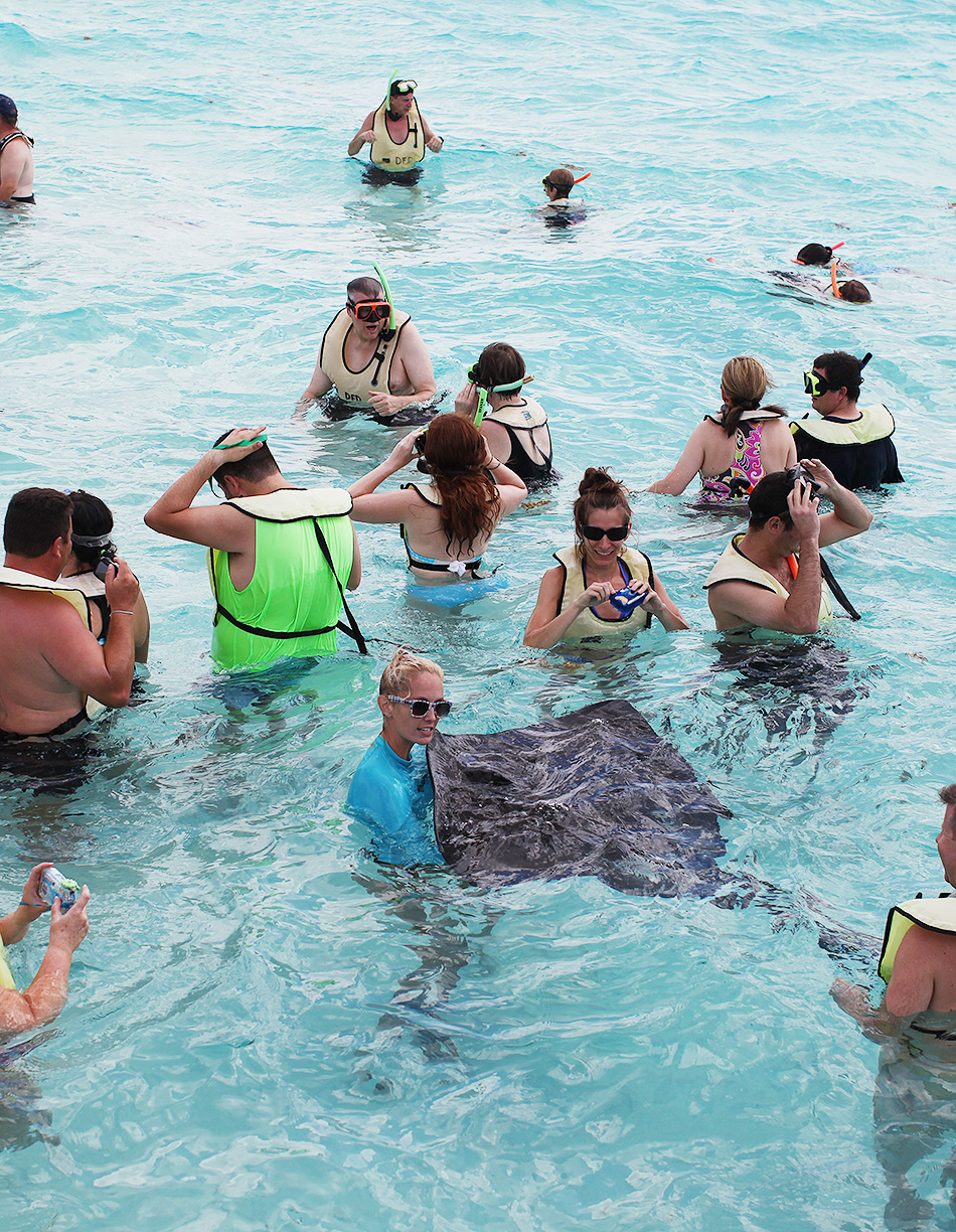 Swimming with Stingrays | Travel