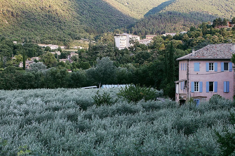 Provence, France | Travel