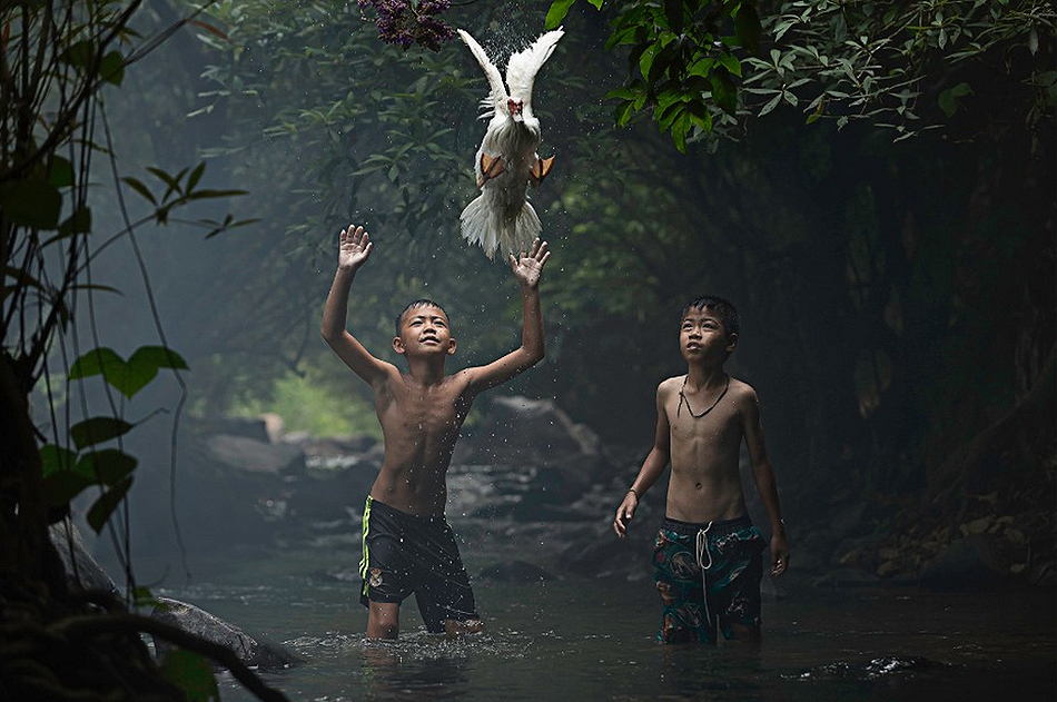 catching a duck by sarah wouters