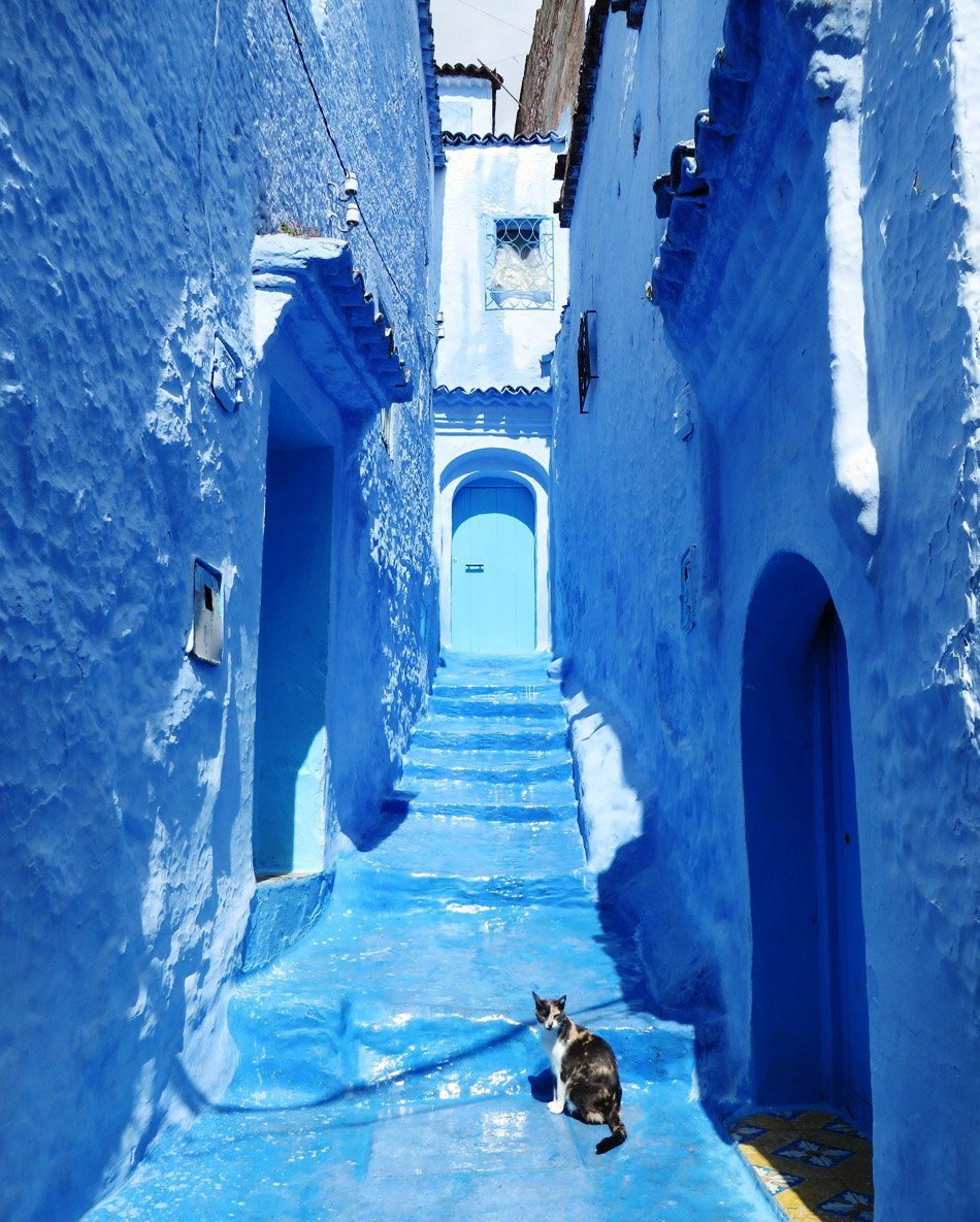 Chefchaouen, Morocco | Travel | @ProjectInspo