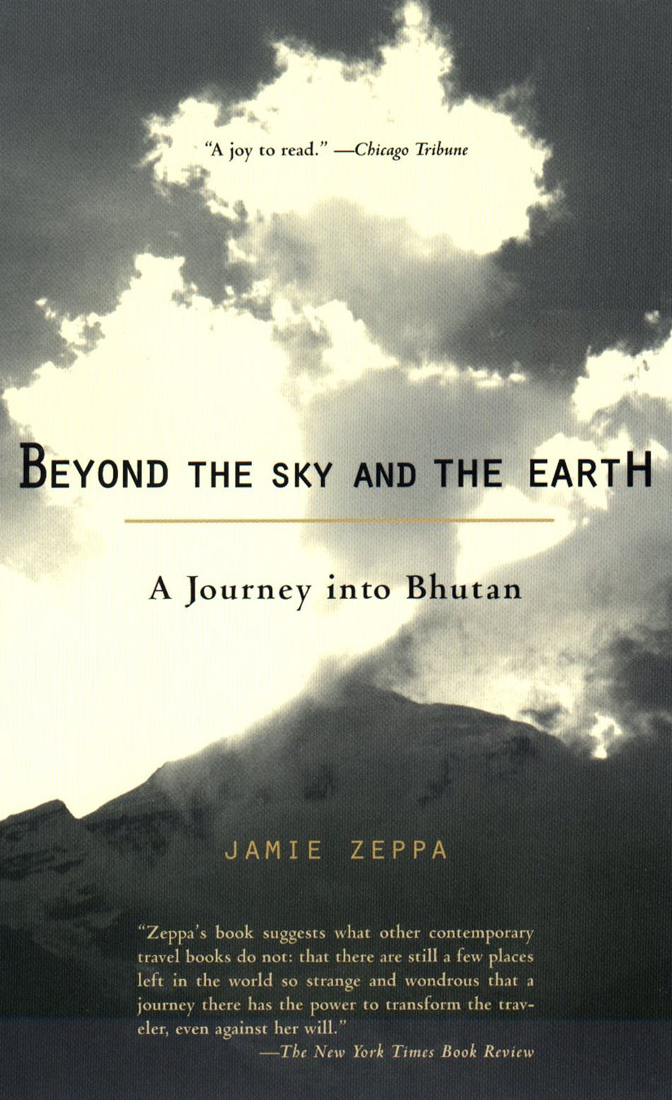 beyond the sky and the earth jamie zeppa