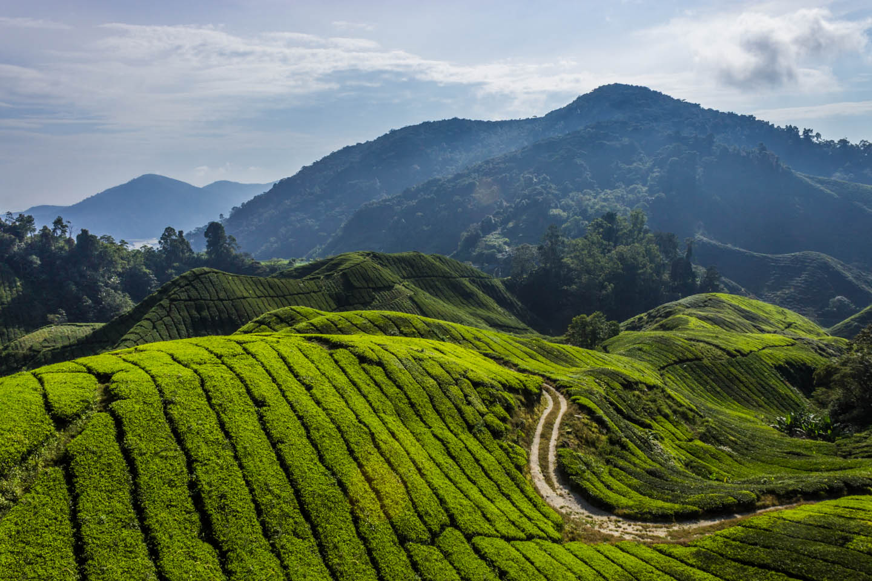 MALAYSIA - OUR GLOBEL TREK