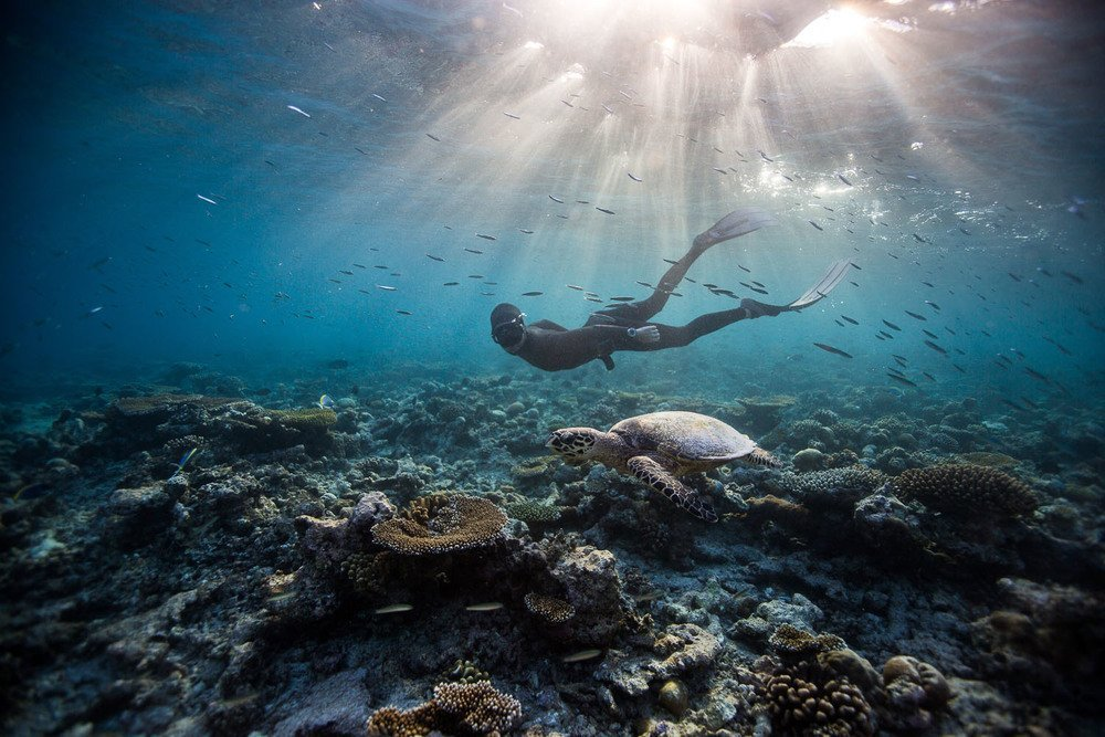 Freediving | @projectinspo