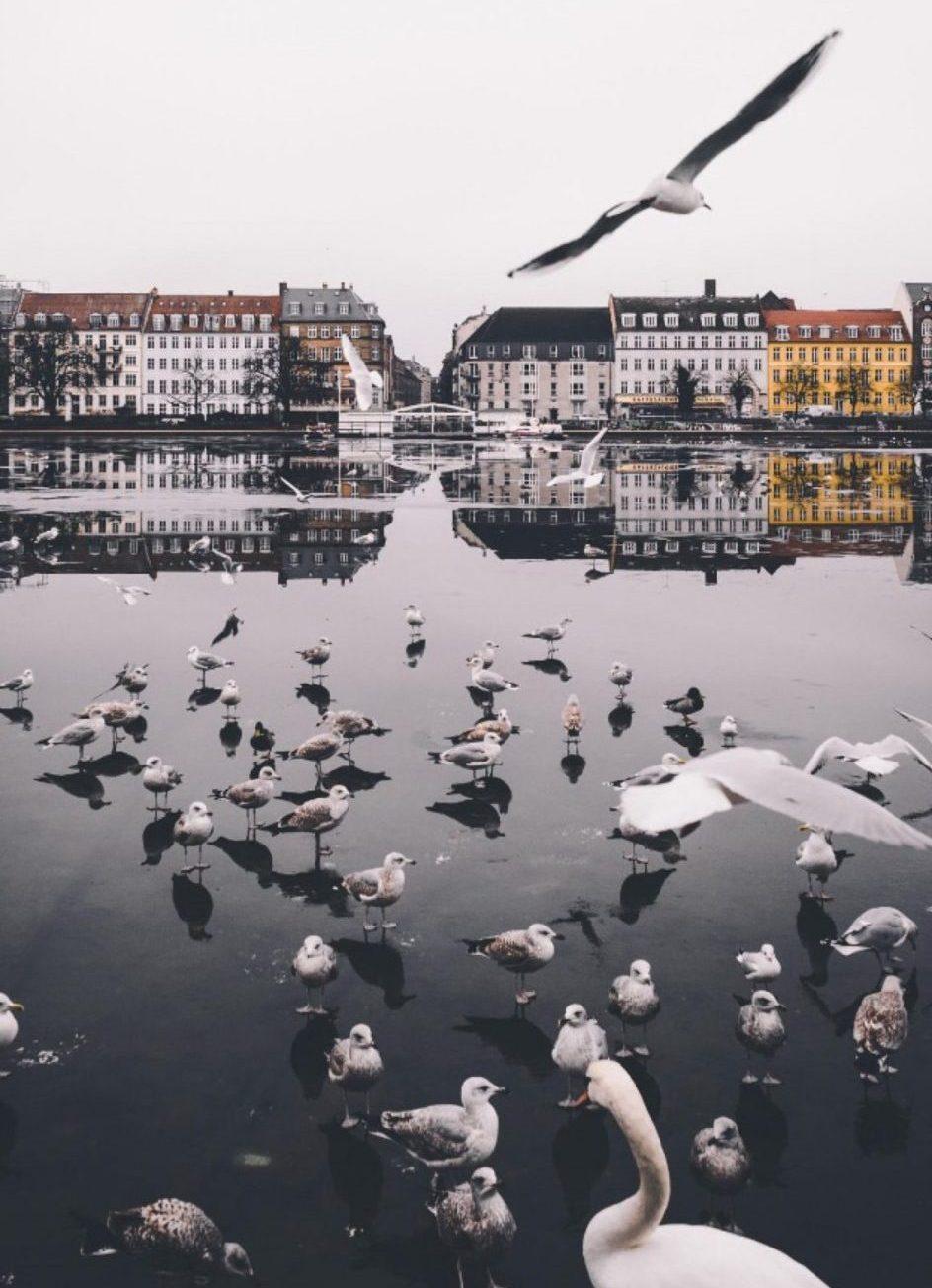 copehagen | Safest Cities In The World | @projectinspo